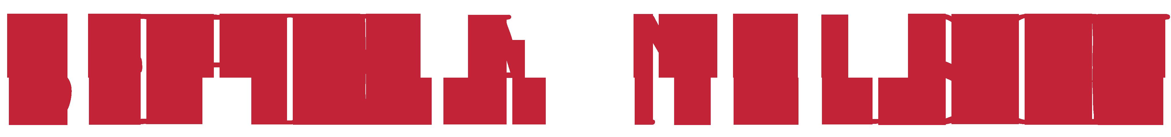 Logo Sefora Nelson